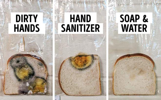 Một thí nghiệm sống động cho thấy rõ sức mạnh của việc rửa tay: Bạn sẽ bất ngờ về kết quả - Ảnh 3.
