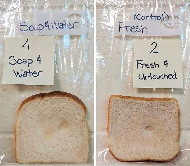 Một thí nghiệm sống động cho thấy rõ sức mạnh của việc rửa tay: Bạn sẽ bất ngờ về kết quả - Ảnh 5.
