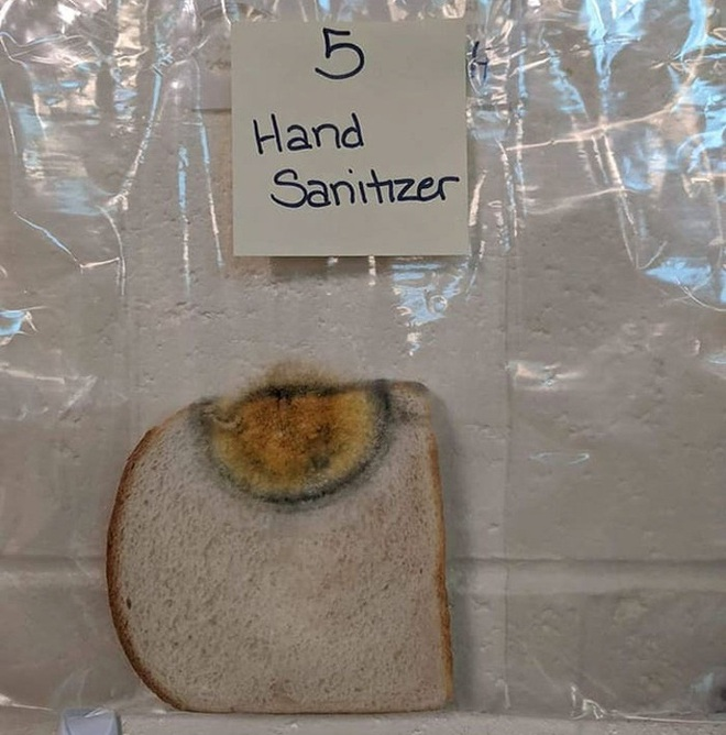 Một thí nghiệm sống động cho thấy rõ sức mạnh của việc rửa tay: Bạn sẽ bất ngờ về kết quả - Ảnh 7.