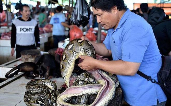 24h qua ảnh: Chủ cửa hàng xẻ thịt trăn tại chợ thú nổi tiếng Indonesia