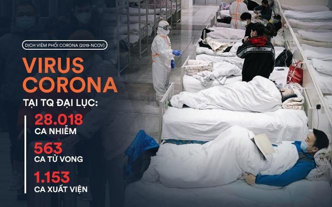 Bệnh viện cabin vuông 1.600 giường đầu tiên ở Vũ Hán đi vào hoạt động, bệnh nhân bình thản đọc sách - Ảnh 1.
