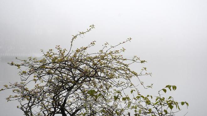 Sương mù dày đặc bao trùm Thủ đô Hà Nội - Ảnh 11.