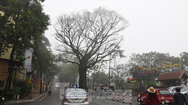 Sương mù dày đặc bao trùm Thủ đô Hà Nội - Ảnh 12.