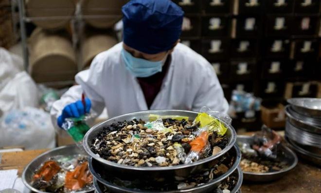 Loạn thuốc chống virus Corona: Phân bò, kim chi, hạt cau cũng được sử dụng - Ảnh 2.