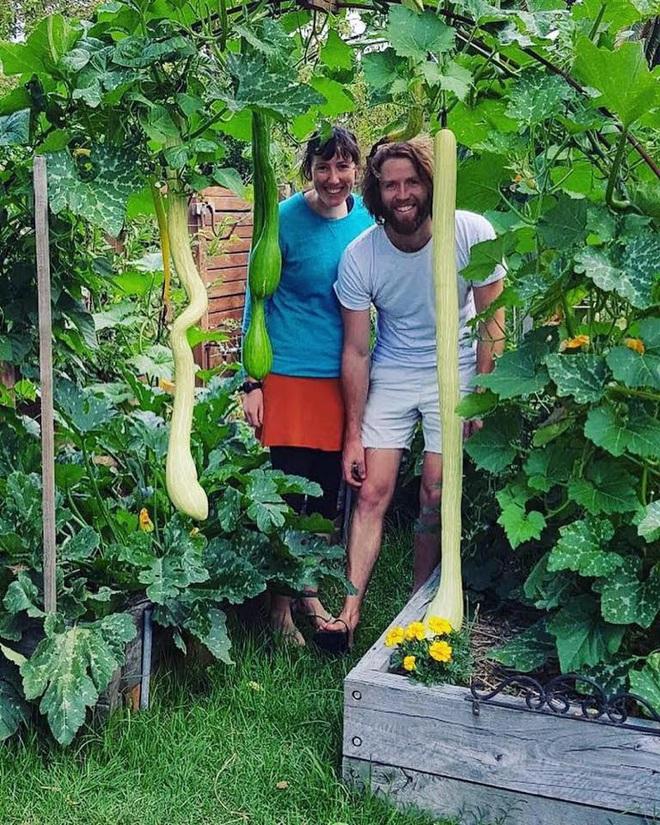 Khu vườn mùa xuân đẹp như tranh vẽ với đủ loại trái cây và rau củ của đôi vợ chồng đam mê trồng trọt - Ảnh 6.