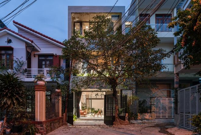 Lạ mắt với ngôi nhà được thiết kế trông như mảnh ruộng bậc thang tại Quy Nhơn - Ảnh 1.