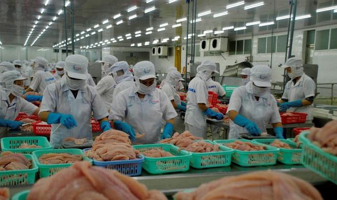 Mỹ trở lại là thị trường số 1 của xuất khẩu cá tra Việt Nam - Ảnh 1.