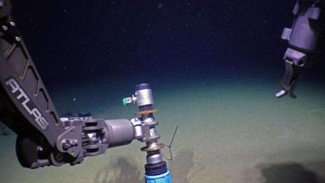 Phát hiện sinh vật bí ẩn mới: Sống sâu 3 km dưới đáy Bắc Băng Dương, không cần oxy - Ảnh 1.