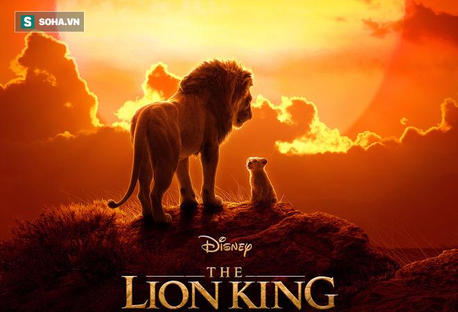 Sư tử trẻ trở về bầy sau biến cố nhưng cuối cùng lại đón nhận hậu quả bi thảm - Ảnh 1.