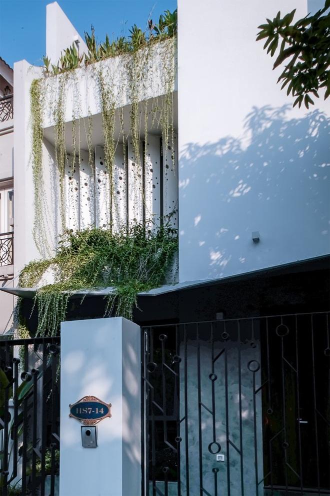 Lạ mắt với ngôi biệt thự ở Hà Nội có cầu thang chẳng giống ai - Ảnh 11.