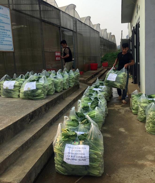 Chủ doanh nghiệp ở Lai Châu gửi hàng tấn rau ủng hộ người dân khu cách ly dịch Covid-19 ở Hà Nội - Ảnh 3.
