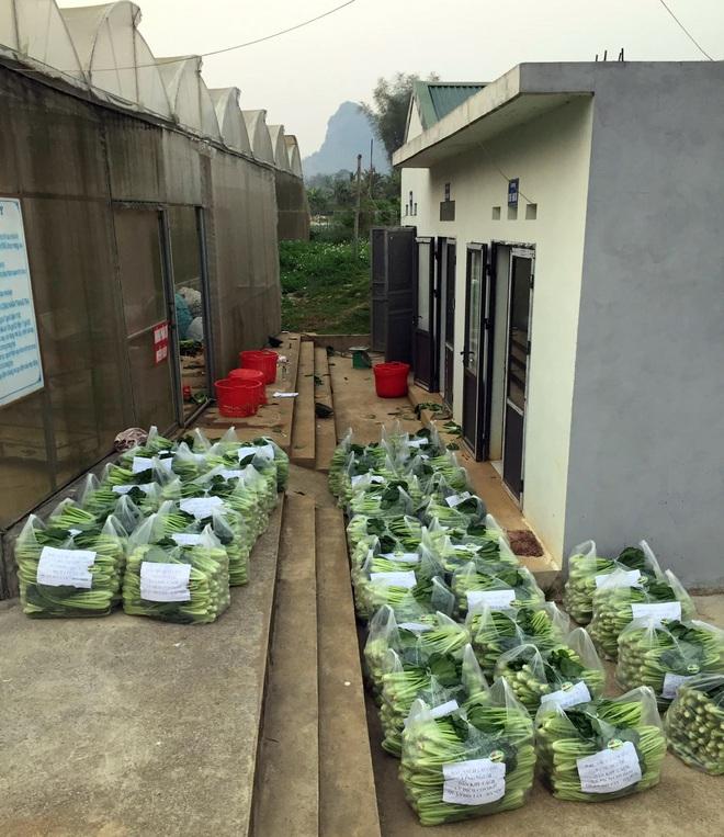 Chủ doanh nghiệp ở Lai Châu gửi hàng tấn rau ủng hộ người dân khu cách ly dịch Covid-19 ở Hà Nội - Ảnh 8.