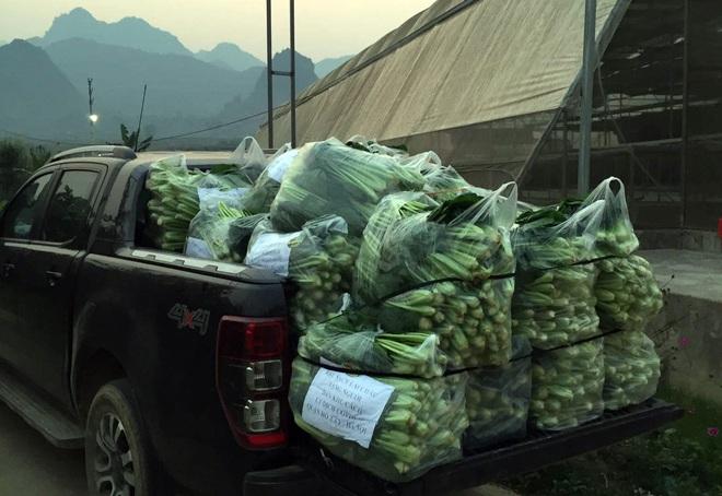 Chủ doanh nghiệp ở Lai Châu gửi hàng tấn rau ủng hộ người dân khu cách ly dịch Covid-19 ở Hà Nội - Ảnh 9.