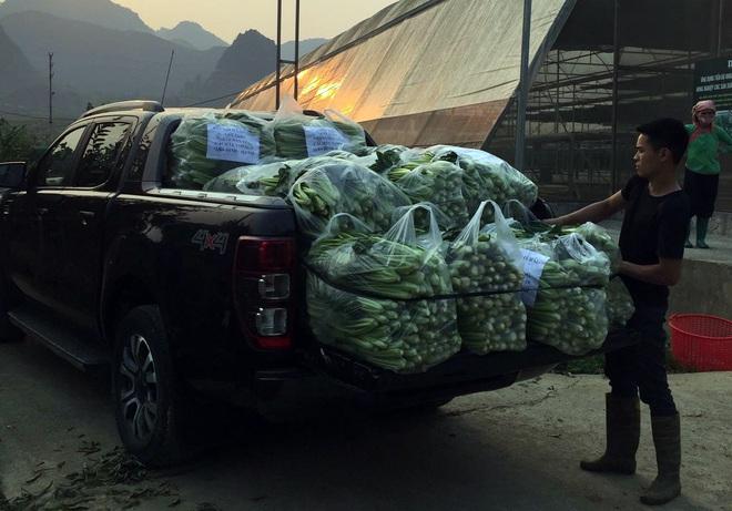 Chủ doanh nghiệp ở Lai Châu gửi hàng tấn rau ủng hộ người dân khu cách ly dịch Covid-19 ở Hà Nội - Ảnh 4.