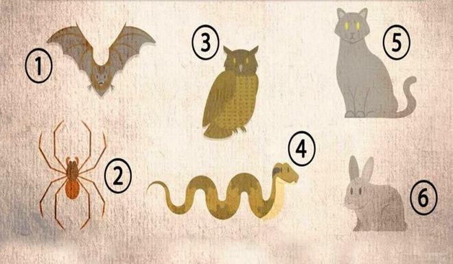 Muốn biết có thành công hay không, chỉ cần chọn một trong những con vật dưới đây - Ảnh 1.