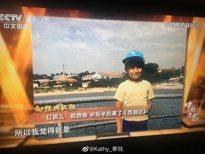 Cuộc sống hiện tại của Hồng Hài Nhi: Là đại gia trăm tỷ, ngoại hình phát tướng không nhận ra - Ảnh 6.