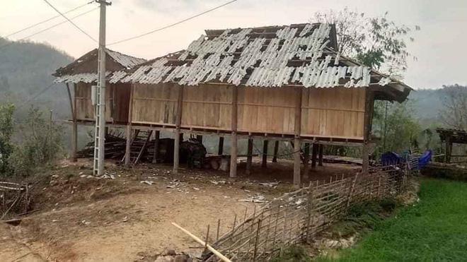 Mưa đá viên to bằng cái bát con làm thủng 500 mái nhà, mận rơi đầy gốc ở Mộc Châu - Ảnh 6.