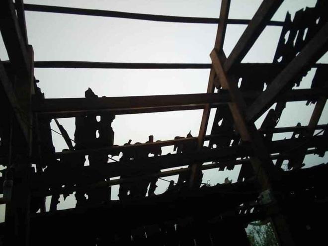 Mưa đá viên to bằng cái bát con làm thủng 500 mái nhà, mận rơi đầy gốc ở Mộc Châu - Ảnh 5.