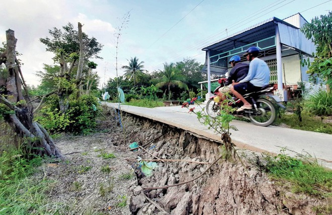 Sụt lún kinh hoàng vùng ngọt hoá Cà Mau - Ảnh 3.
