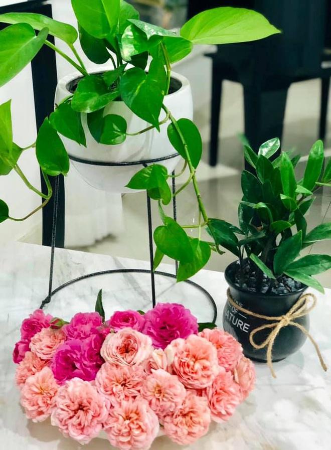 Bà xã Quyền Linh khoe thành quả thu hoạch hoa trái sai trĩu trong căn biệt thự 21 tỷ, được cả chồng lẫn 2 cô con gái xinh đẹp phụ giúp - ảnh 20