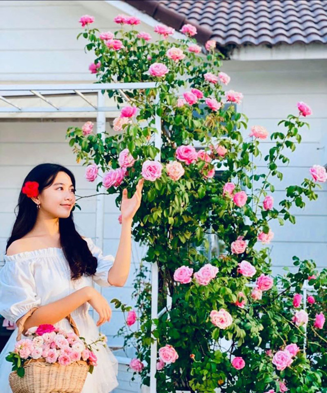 Bà xã Quyền Linh khoe thành quả thu hoạch hoa trái sai trĩu trong căn biệt thự 21 tỷ, được cả chồng lẫn 2 cô con gái xinh đẹp phụ giúp - Ảnh 10.