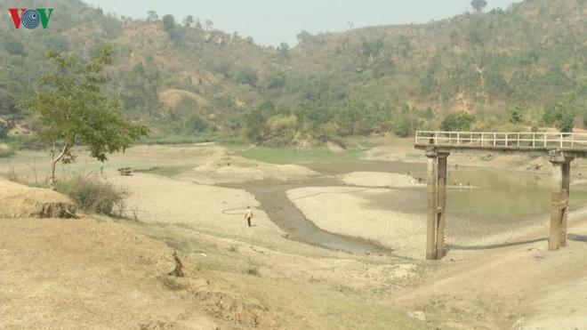 Nhiều công trình thủy lợi hết nước, hàng nghìn ha cây trồng mất trắng - Ảnh 2.