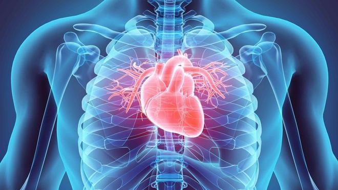 8 khung giờ thải độc cho cơ thể: Ai làm được sẽ giảm bớt nguy cơ bị bệnh ở nội tạng - Ảnh 3.