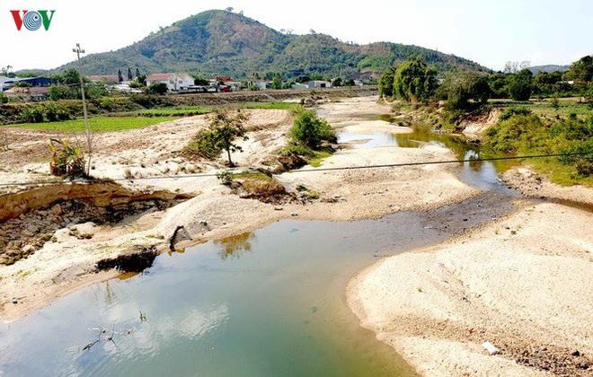 Nhiều công trình thủy lợi hết nước, hàng nghìn ha cây trồng mất trắng - Ảnh 4.