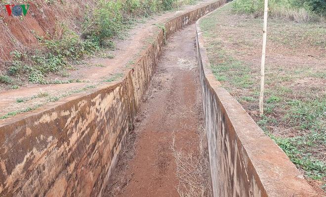 Nhiều công trình thủy lợi hết nước, hàng nghìn ha cây trồng mất trắng - Ảnh 7.