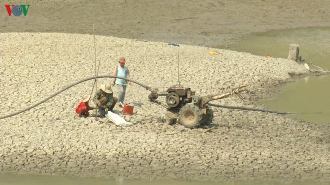 Nhiều công trình thủy lợi hết nước, hàng nghìn ha cây trồng mất trắng - Ảnh 9.