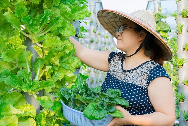Ở nhà tránh dịch mới vài ngày, hội chị em đã bắt đầu đua nhau khoe vườn rau tại nhà, quả trĩu cành - ảnh 24