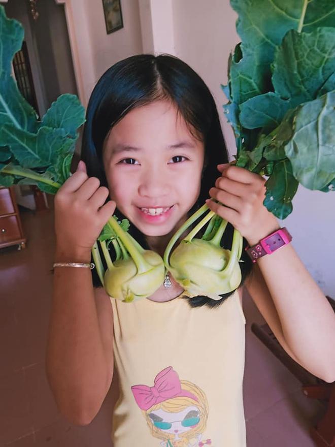 Ở nhà tránh dịch mới vài ngày, hội chị em đã bắt đầu đua nhau khoe vườn rau tại nhà, quả trĩu cành - ảnh 27