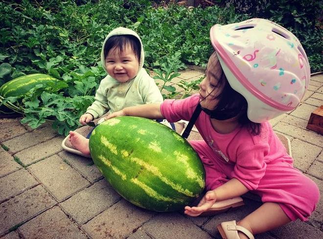 Mê vườn, người phụ nữ 8X chuyển từ thành phố về mảnh vườn rộng 2000m2 ở ngoại ô để tận hưởng hạnh phúc - ảnh 7