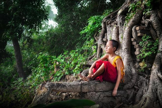 Đức Phật nói có 4 kiểu người: 2 kiểu hướng đến chỗ sáng, 2 kiểu hướng đến chỗ tối - Ảnh 1.