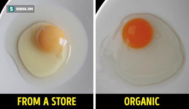 11 kinh nghiệm tuyệt vời để kiểm tra thực phẩm của bạn có thật sự tốt hay không: Hữu ích! - Ảnh 1.