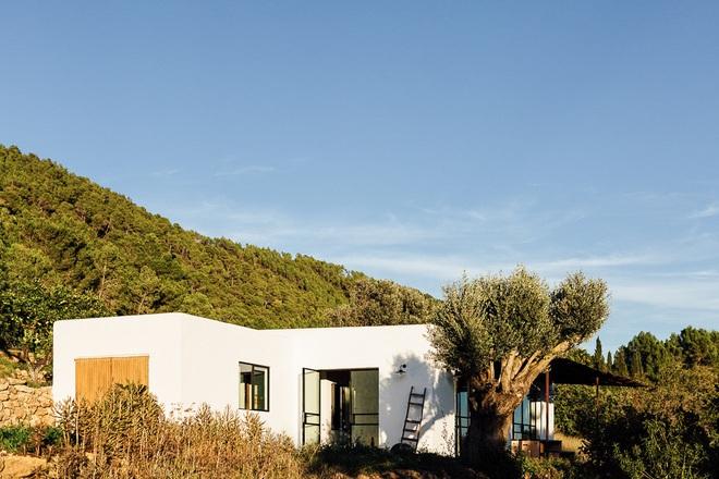 Căn nhà cấp 4 tạo ấn tượng đặc biệt nhờ kết hợp giữa kiến trúc hiện đại với thiên nhiên hoang sơ - Ảnh 3.