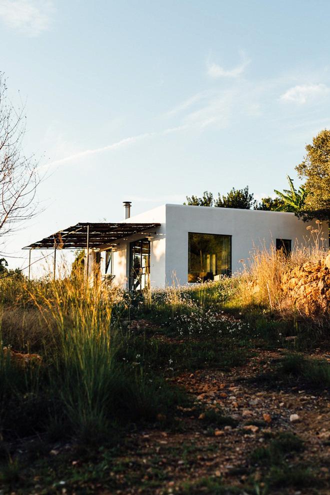 Căn nhà cấp 4 tạo ấn tượng đặc biệt nhờ kết hợp giữa kiến trúc hiện đại với thiên nhiên hoang sơ - Ảnh 7.
