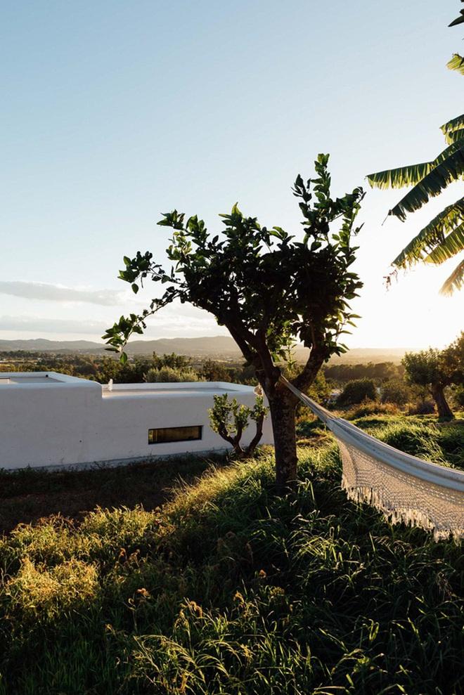 Căn nhà cấp 4 tạo ấn tượng đặc biệt nhờ kết hợp giữa kiến trúc hiện đại với thiên nhiên hoang sơ - Ảnh 10.
