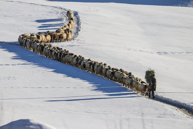 """7 ngày qua ảnh: Vẻ đẹp rạng ngời của """"bóng hồng"""" trong quân đội Nga - Ảnh 7."""