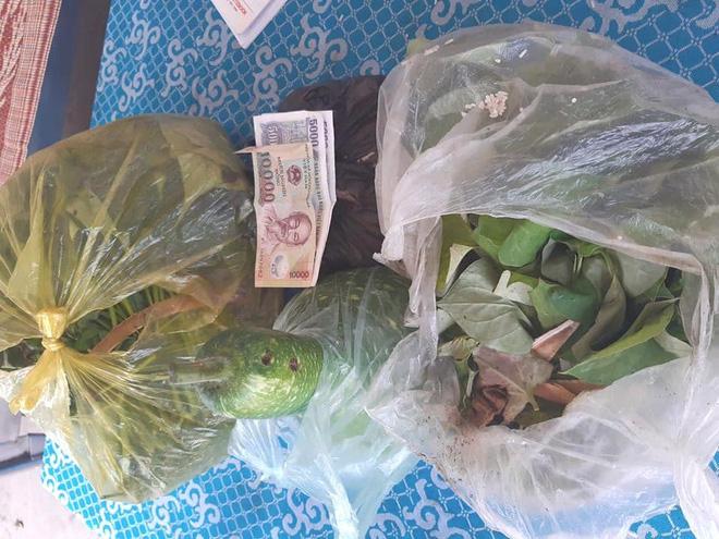 2 em nhỏ đập lợn tiết kiệm, các cụ già mang rau, gạo ủng hộ phòng dịch Covid-19 ở Nghệ An, Hà Tĩnh - Ảnh 6.