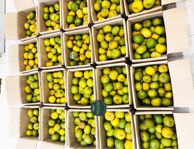 Giải cứu trái cây, cô chủ xinh đẹp làm 10.000 chai nước ép gửi các y bác sỹ chống dịch Covid - Ảnh 2.