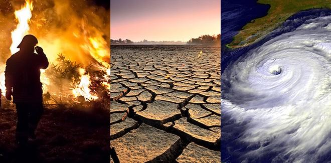 Những bằng chứng khủng khiếp chứng minh biến đổi khí hậu đã giải phóng virus bệnh tật từ động vật hoang dã vào con người - Ảnh 11.