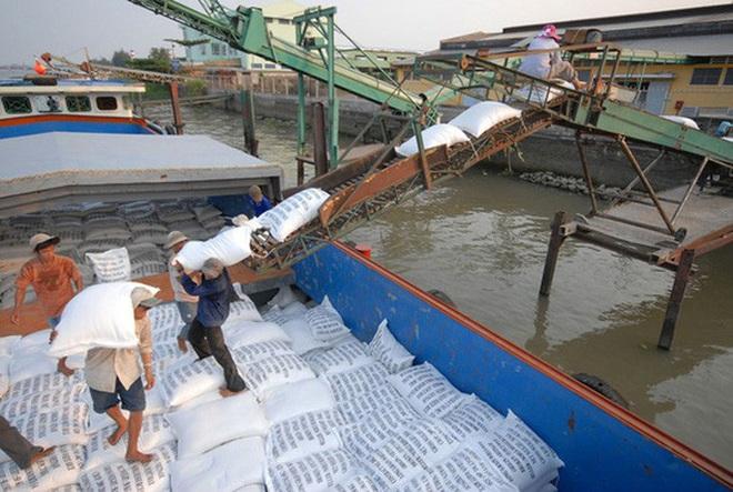 Hải quan mở tờ khai xuất khẩu gạo lúc nửa đêm, những doanh nghiệp nào đã đăng ký? - Ảnh 1.