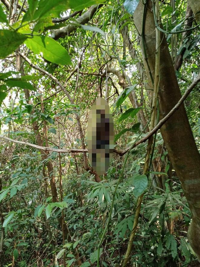 Người đàn ông chết trong tư thế treo cổ trên đèo Bảo Lộc  - Ảnh 1.
