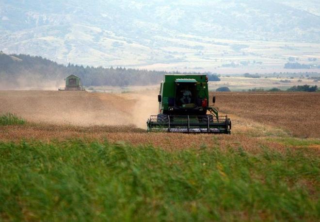 Châu Âu kêu gọi đội quân bóng tối giải cứu cánh đồng không người thu hoạch  - Ảnh 1.