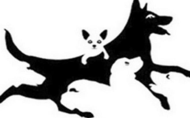 Trong hình có bao nhiêu chú chó? Con số tiết lộ độ tuổi tâm hồn bạn: Già dặn hay ngây thơ?