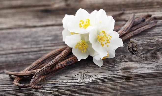 8 loại hương hoa có thể giúp diệt và xua đuổi muỗi trong nhà thích hợp cho chị em dùng vào những ngày hè - Ảnh 2.