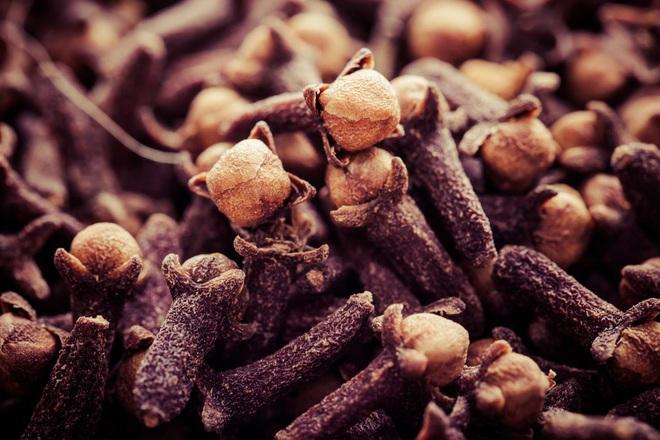 8 loại hương hoa có thể giúp diệt và xua đuổi muỗi trong nhà thích hợp cho chị em dùng vào những ngày hè - Ảnh 4.