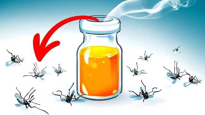 8 loại hương hoa có thể giúp diệt và xua đuổi muỗi trong nhà thích hợp cho chị em dùng vào những ngày hè - Ảnh 9.