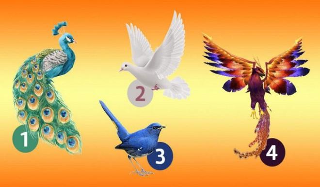 Chọn 1 con chim để biết ngay vận may của mình: Thành công, ổn định hay sắp đổi vận? - Ảnh 1.